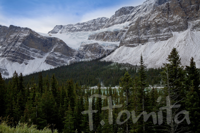B1クロウフット氷河・カナダ、バンフ国立公園.jpg