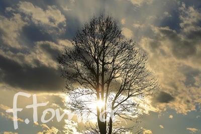 B冬の空1.jpg