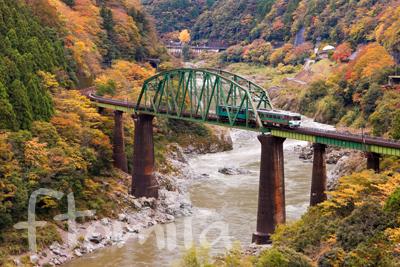 鉄道)土讃線・徳島県.jpg