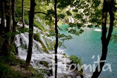 Bプリトビチェ湖群国立公園4(クロアチア、プリトビチェ).JPG