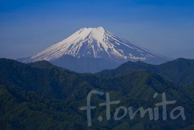 B新緑の富士山.jpg