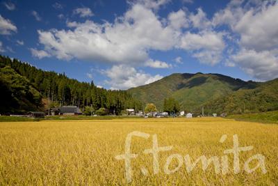 B4田園風景.jpg
