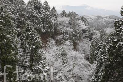 阿蘇の雪景色