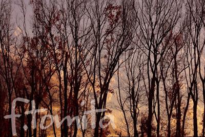 B冬の夕焼け.jpg